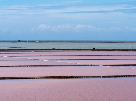 evaporation: Evaporation ponds of saline salt refinery plant containing sea water colored pink by algae