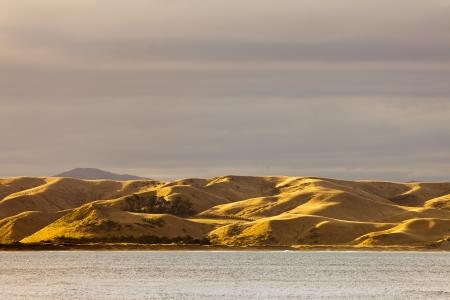sequias: Coastal pastizales colinas se volvió seco y amarillo por la sequía, Isla Sur, Nueva Zelanda