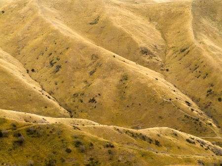 Grassland on folded eroded mountain slope turned dry and yellow by drought Stock Photo - 13797690