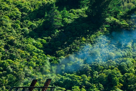 greenhouse gas: Greenhouse gas atmospheric pollution concept of blue smoke discharged from chimney in front of lush green natural forest background
