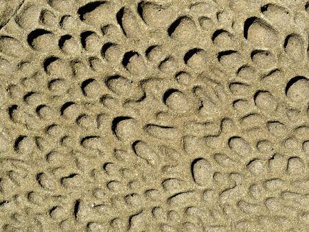 pitted: Texture di sfondo di arenaria erosa snocciolate superficie esposta alle intemperie