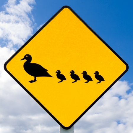 Road sign warning to watch out for ducks and ducklings crossing the road on cloudy blue sky background photo