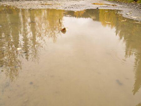 eau de pluie: Journ�e d'automne pluvieuse sur le Sud Canol Road, Territoire du Yukon, au Canada, avec des flaques d'eau de pluie refl�tant belle nature sauvage saule jaune