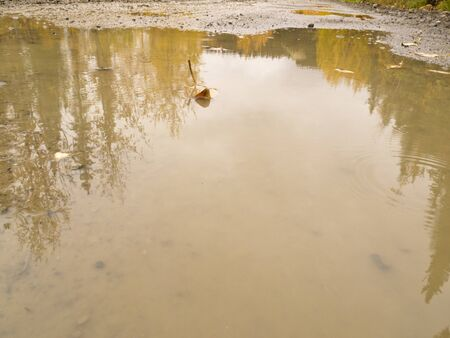yukon territory: Rainy autumn day on South Canol Road, Yukon Territory, Canada, with puddles of rainwater reflecting beautiful yellow willow wilderness