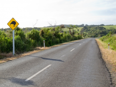 New Zealand Road Sign, Attention Kiwi Crossing beside country road warning motorist to watch out for this endangered icon of NZ Stock Photo - 14085279