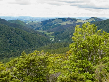 Lush green Tararua Range landscape on North Island of New Zealand Banco de Imagens