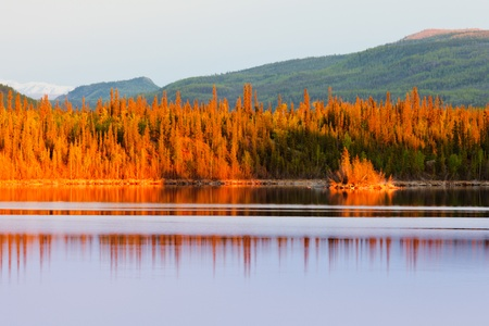 yukon: Warm sunset light reflections on calm surface of boreal forest wilderness pond, Twin Lakes, Yukon Territory, Canada