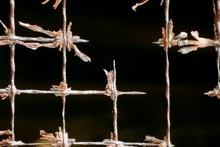 fencing wire: Very old rusted out iron wire mesh fencing background texture pattern