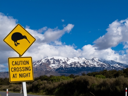 active volcano: New Zealand Road Sign Attention Kiwi Crossing at road near active volcano of Mount Ruapehu in Tongariro National Park Stock Photo