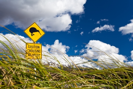 ratite: New Zealand Road Sign Attention Kiwi Crossing at road near active volcano of Mount Ruapehu in Tongariro National Park Stock Photo