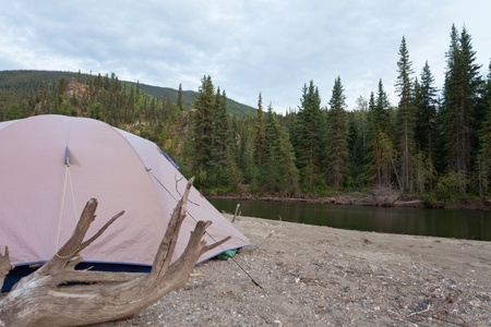 alongside: Tent pitched on a sand bar alongside McQuesten River, Yukon Territory, Canada, in remote boreal forest wilderness