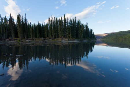 boreal: Boreal forest reflected on calm water surface of Steward River, central Yukon Territory, Canada, near eown of Mayo forming a beautiful northern riverscape.