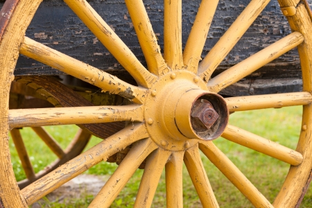 hub: Old painted yellow wooden wagon wheel with spokes radiating from the hub on the axle of old cart
