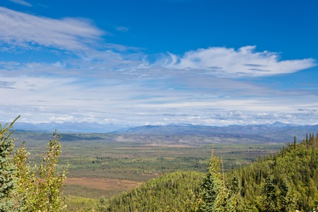 boreal: Boreal forest of central Yukon Territory, Canada, with Ogilvie Mountains range in the distance on the horizon Stock Photo
