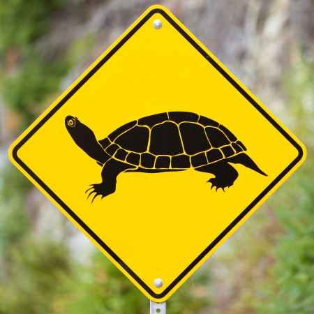 xing: Animal Road Sign - Attention Turtles Crossing - on blurry forest background