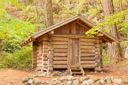 Old solid log cabin shelter hidden among green trees in the forest photo
