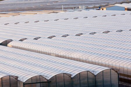 agriculture industrial: Large scale commercial greenhouse structures cover endless areas Stock Photo