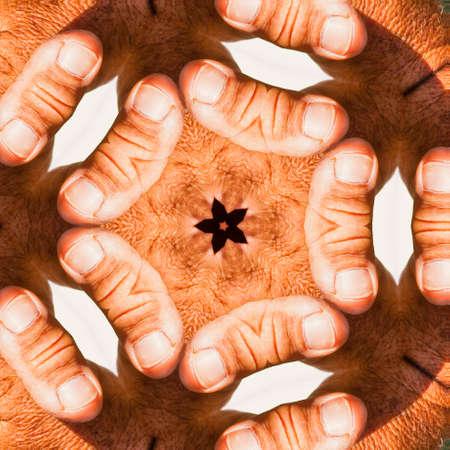 endlos: Kaleidscopic veränderten menschlichen Hand Muster mit wiederholten menschlichen Daumen als gespiegelte Objekt Lizenzfreie Bilder