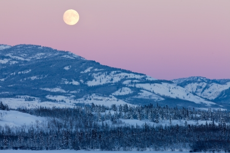 Scenic winter mountain landscape of the Yukon Territory  Canada  with full moon rising in pink cloudless sky photo