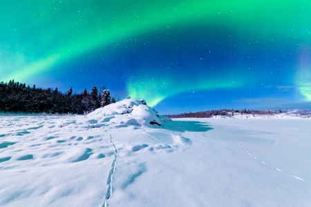 Spectaculaire weergave van intense noorderlicht of Aurora borealis of poollicht vormen groene wervelingen over besneeuwde winterlandschap