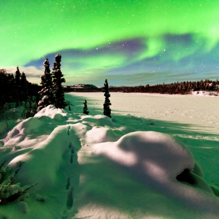 Spectacular display of intense Northern Lights or Aurora borealis or polar lights forming green arc over snowy winter landscape photo