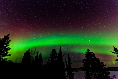 aurora borealis: Green glowing display of Northern Lights or Aurora borealis or polar lights in night sky full of stars over taiga forest
