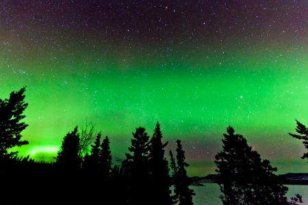 magnetosphere: Green glowing display of Northern Lights or Aurora borealis or polar lights in night sky full of stars over taiga forest