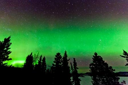 magnetosphere: Visualizzazione di verde incandescente boreale o aurora boreale o luci polari nel cielo notturno pieno di stelle sopra taiga foresta