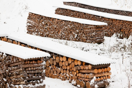 neatly stacked: Neatly stacked fire wood as sustainable renewable heat source covered in snow