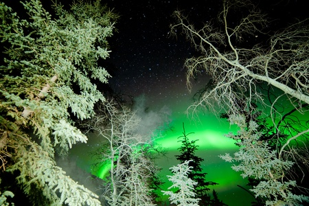 astrophotography: Astrophotography stars and green glowing display of Northern Lights or Aurora borealis over boreal forest or taiga of Yukon Territory  Canada Stock Photo