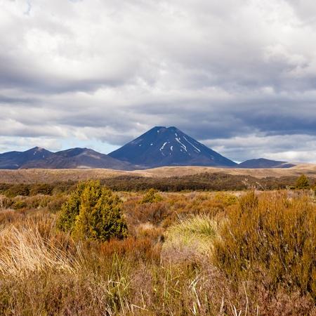 tongariro national park: Active volcano cone of Mount Ngauruhoe in Tongariro National Park  North Island of New Zealand