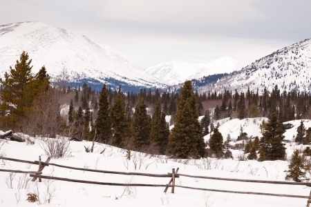 Snowy winter mountain landscape with ranch fence in boreal forest taiga of Yukon Territory  Canada. photo