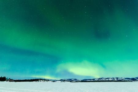 Intense Northern Lights or Aurora borealis or polar lights on moon lit night sky over winter landscape of Lake Laberge  Yukon Territory  Canada Stock Photo - 19220116