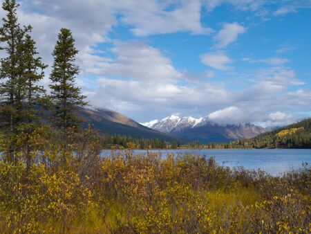 Distant mountains and fall colored willows at the shore of beautiful scenic Lapie Lake  Yukon Territory  Canada photo