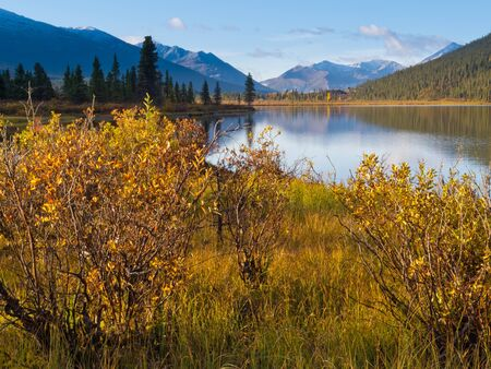 distant: Fall colored willows at the shore of beautiful scenic Lapie Lake  Yukon Territory  Canada Stock Photo