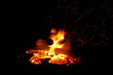 warmth: Abstract symbol of warmth and life  campfire burning up firewood on dark background