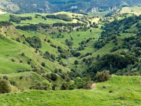newzealand: Scenic landscape of rural farmland pasture in hill country of Hawkes Bay district on North Island of New Zealand Stock Photo