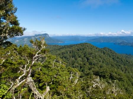 Scenic forest wilderness landscape of Urewera National Park with blue surface of Lake Waikaremoana  Hawke Stock Photo - 20308392
