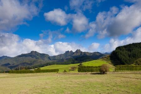 newzealand: Scenic farmland framed by rugged mountains landscape on Coromandel Peninsula  North Island of New Zealand Stock Photo