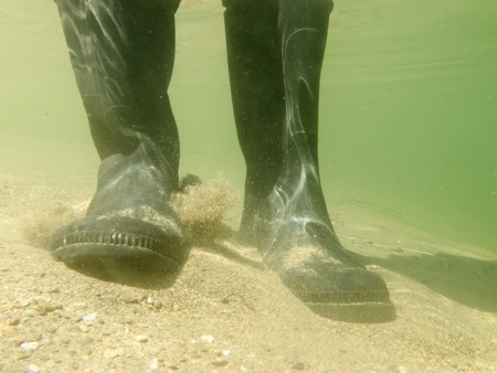 waders: Closeup underwater view of rubber boots gumboots or waders of a person walking in shallow water of gravel and sand beach Stock Photo