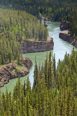 yukon: Miles Canyon Yukon River rock cliffs in dense boreal forest taiga just South of the city of Whitehorse  Yukon Territory  Canada