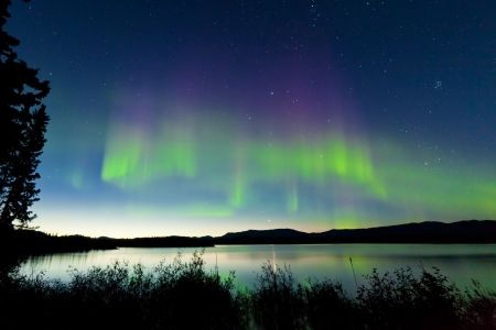 Dancing Northern lights  Aurora borealis  in summer over northern horizon of Lake Laberge  Yukon Territory  Canada  at early dawn