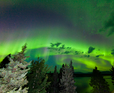 yukon: Intense green northern lights  Aurora borealis  on night sky with clouds and stars over boreal forest taiga of Lake Laberge  Yukon Territory  Canada Stock Photo