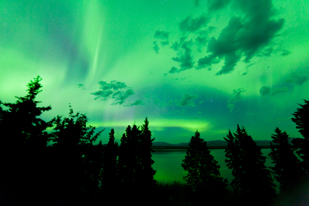 northern light: Intense green northern lights  Aurora borealis  on night sky with clouds and stars over boreal forest taiga of Lake Laberge  Yukon Territory  Canada Stock Photo