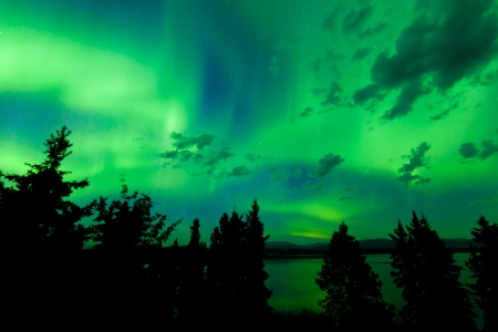 boreal: Intense green northern lights  Aurora borealis  on night sky with clouds and stars over boreal forest taiga of Lake Laberge  Yukon Territory  Canada Stock Photo