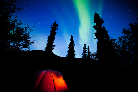 boreal: Tent camping in boreal forest taiga under a flare of northern lights, Aurora borealis, or polar lights in starry night sky Stock Photo
