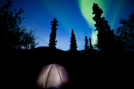northern light: Tent camping in boreal forest taiga under a flare of northern lights, Aurora borealis, or polar lights in starry night sky Stock Photo