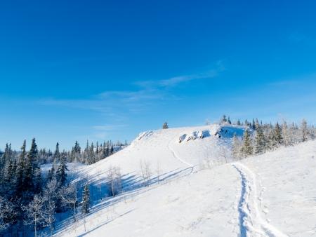 deep powder snow: Snow-shoe trail prints in deep powder snow on hills in pristine winter wonderland wilderness