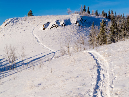 Snow-shoe trail prints in deep powder snow of pristine winter wonderland hills wilderness photo