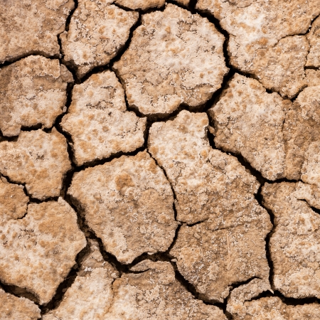 desolation: Cracked dry earth or mud environmental background texture pattern conceptual of drought and natural disaster
